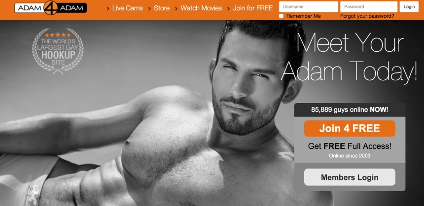 adam 4 adam review
